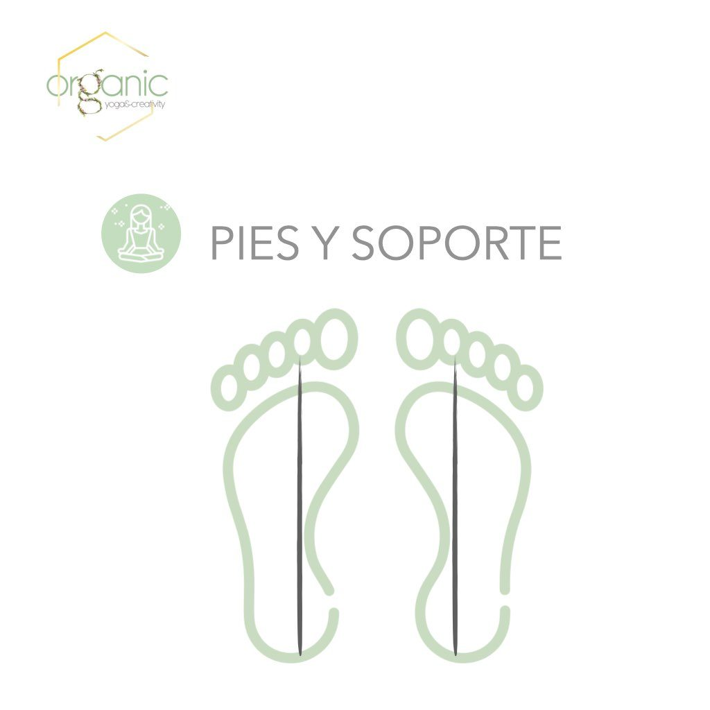 Organic_pies.002